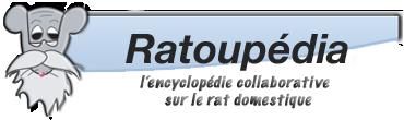 Ratoupédia, l'encyclopédie du rat domestique